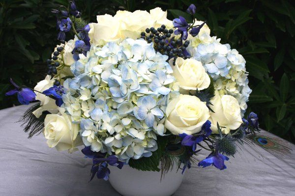 800x800 1323109260758 bluehydrangeas2