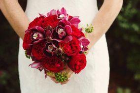 Ilienne Florals, Ltd