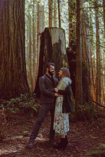 Love in the Redwoods