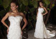 Tmx 1386354239908 Bia Arden wedding dress