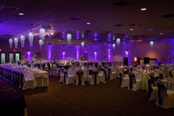 Purple reception motif