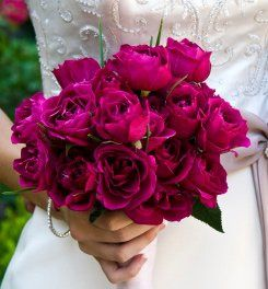 Tmx 1326926878331 Northpark3 Buffalo, NY wedding florist