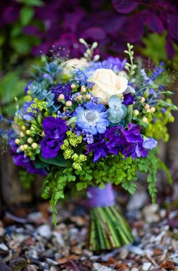 Blue and violet arrangement