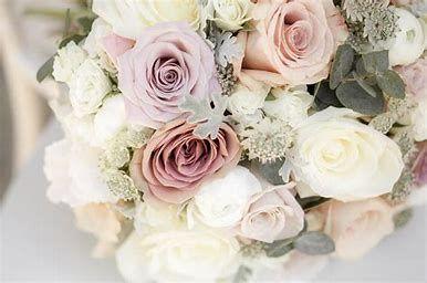 flowers 51 1005277