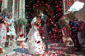 Dreamdust Weddings
