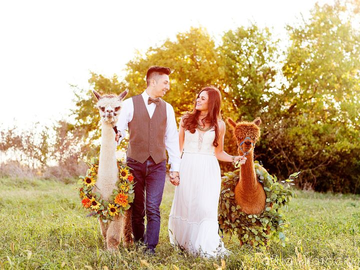 Tmx 101619 097 51 38277 V1 Iowa City, IA wedding photography