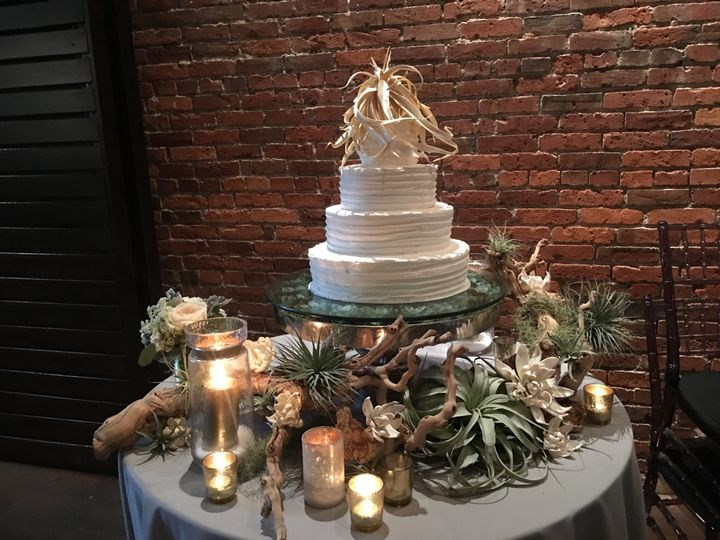 Succulent cake Axis Seattle