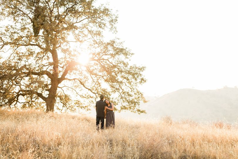 Engaged couple at Millerton
