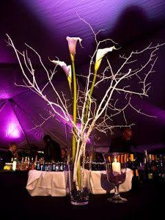 Tmx 1446488011794 Weddint Tent Indianapolis, IN wedding rental