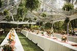 Ace Party Rental image