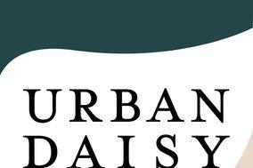 Urban Daisy