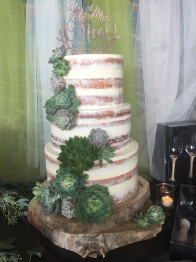 Naked Wedding Cake with Succulents at Rob Fleming Lodge, The Woodlands, TX