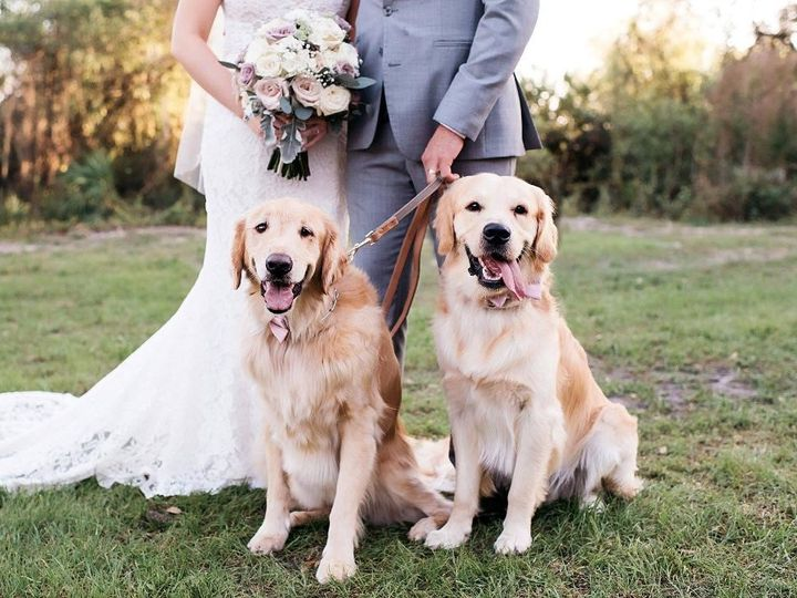 Tmx A Bayshore Bree 51 1069377 1559344989 Fort Myers, FL wedding florist