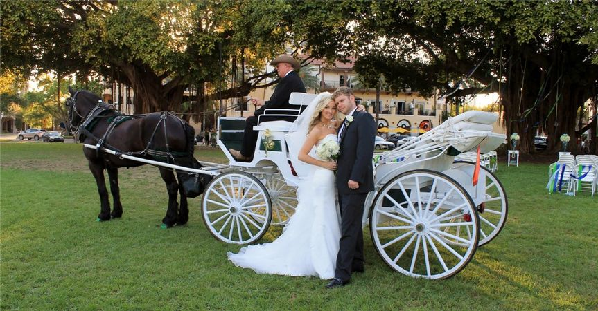 brigeandgroomwithhorseandcarriage