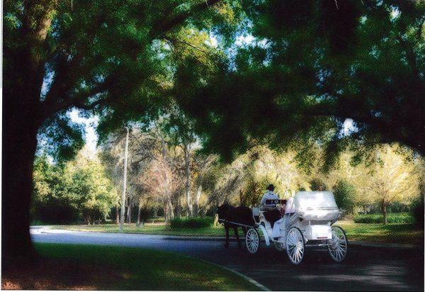 Tmx 1330118533349 Wedinng Saint Petersburg wedding transportation