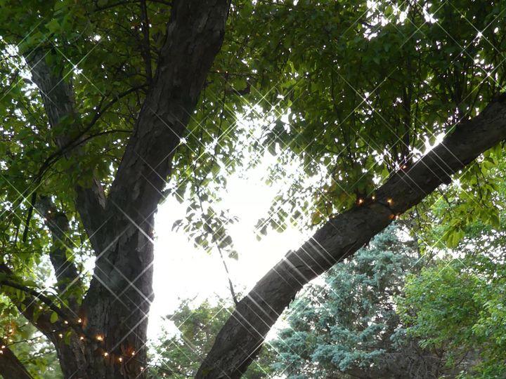 Tmx Loyas Rj Dinner Through Trees 51 1971477 159113864086613 Ames, IA wedding venue