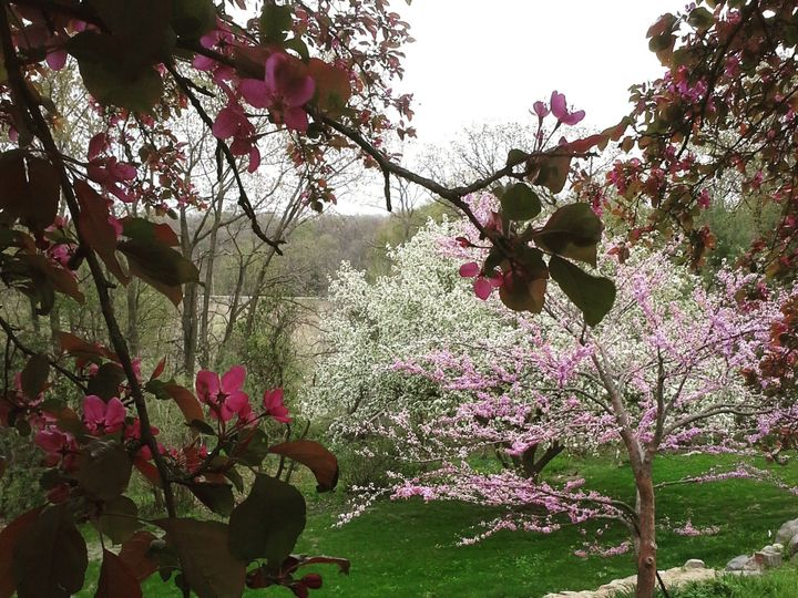 Tmx Loyas Spring Blossoms From Top 51 1971477 159113863720028 Ames, IA wedding venue