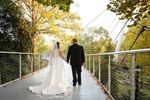 Curated Elopements image