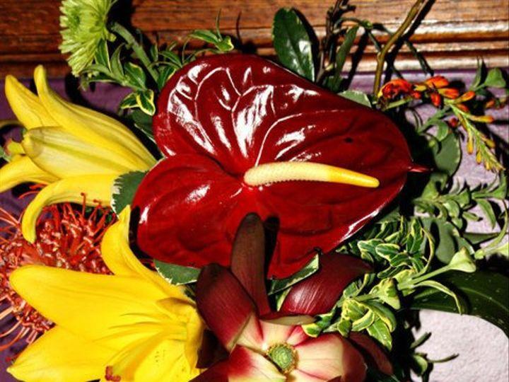 Tmx 1340309921479 Wc25 Grinnell, IA wedding florist