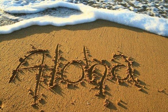 Tmx 1428016517595 Aloha In The Sand Orlando, Florida wedding travel
