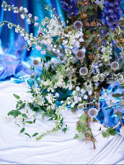 Blue-themed botanicals