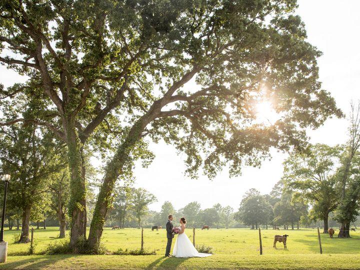Tmx 1497888952814 Pedigo Photography Houston Wedding Photography  Houston, TX wedding photography
