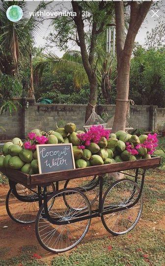 Coco for coconuts