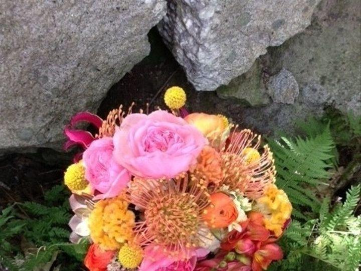Tmx 1395953042887 Proteabouque Waldoboro, ME wedding florist
