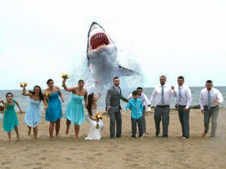 Tmx 1441828038113 Tovar2 Virginia Beach, VA wedding officiant