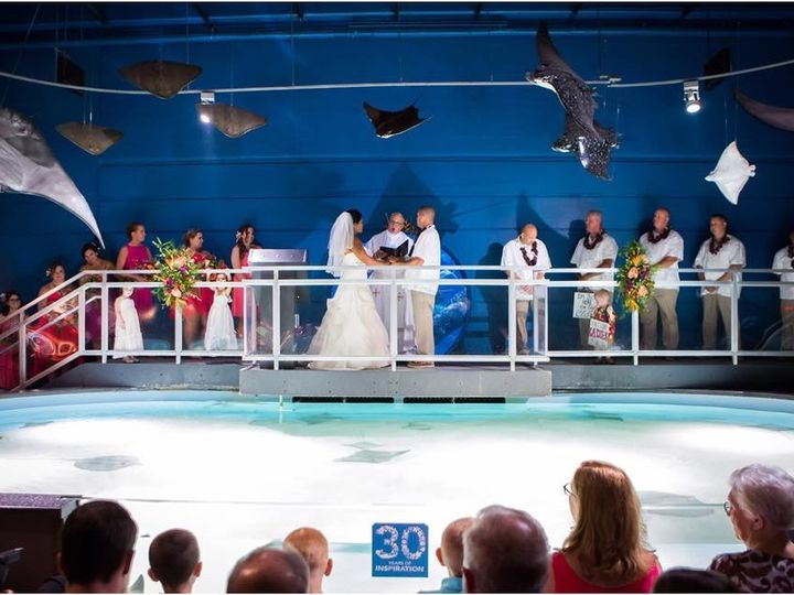 Tmx 1477181391335 Img0608 Virginia Beach, VA wedding officiant