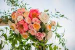 Dandelion House Farm & Floral image