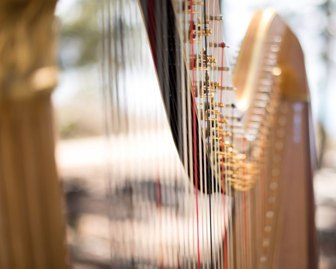 Harp closeup