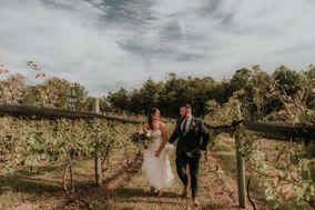 Saude' Creek Vineyards