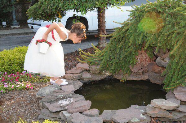 Tmx 1293201799635 Jolene389 Williamsville, NY wedding photography