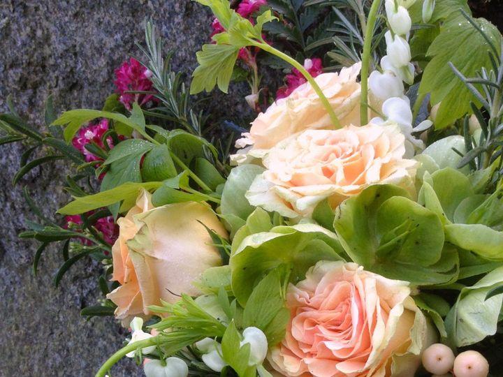 Tmx 1515878787 71912aa31e292497 1515878785 72ae001278114e70 1515878784014 14 Fullsizeoutput 16 Eastsound, Washington wedding florist