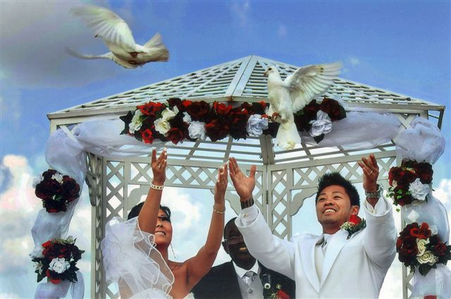 Wedding Day Doves