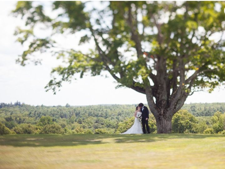 Tmx 1503773675612 Tree In Spring Leicester, MA wedding venue