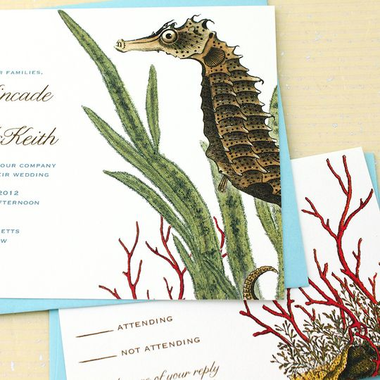 colorful Seahorse wedding invitations made from antique scientific illustrations perfect for a beach...