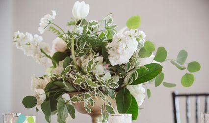 Anne Cothran Garden & Floral