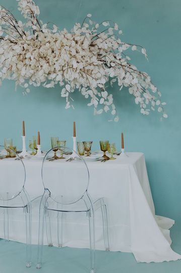 Blue backgrounds | EmVision Photography