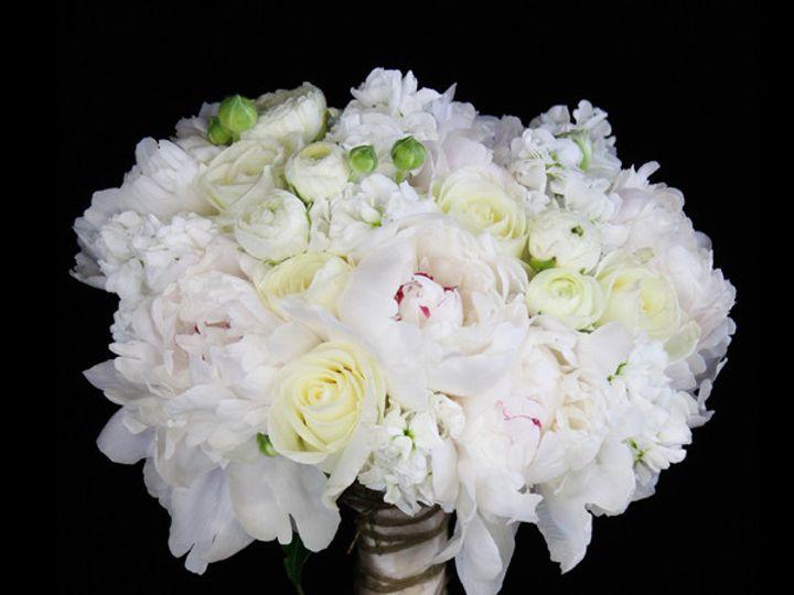 Tmx 1393521566964 Brlppeonyrnncl Virginia Beach, Virginia wedding florist