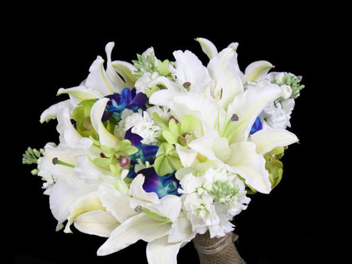 Tmx 1393522087345 Whitblugrnlilydendr Virginia Beach, Virginia wedding florist