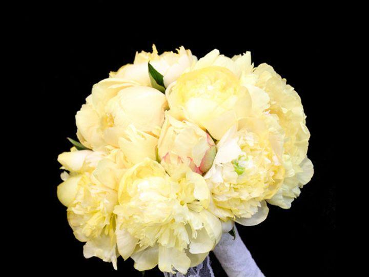 Tmx 1393522117864 Yellowpeony Virginia Beach, Virginia wedding florist