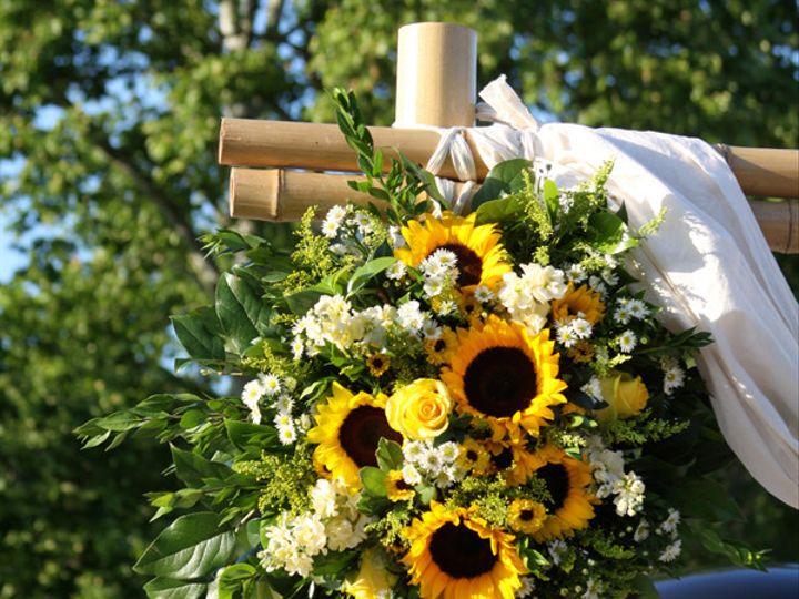 Tmx 1394224501904 Archcornersunflowe Virginia Beach, Virginia wedding florist