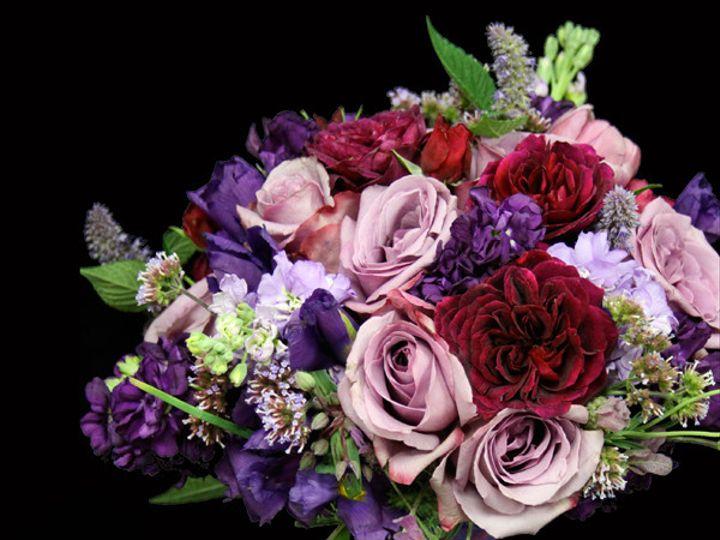 Tmx 1394224515907 Burgpurpl Virginia Beach, Virginia wedding florist