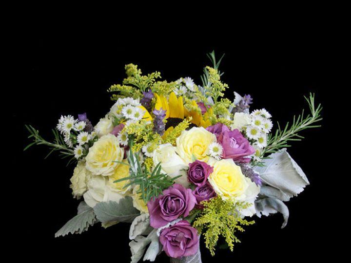 Tmx 1394224540722 Lavyelosunflw Virginia Beach, Virginia wedding florist