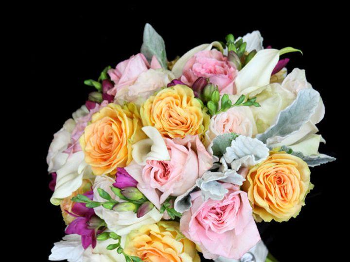 Tmx 1394224545698 Peachpinkwhitefreesdust Virginia Beach, Virginia wedding florist