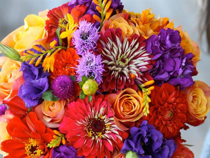Tmx 1394224547841 Purporngzinni Virginia Beach, Virginia wedding florist