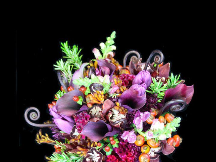 Tmx 1394231868941 Plumfernrosehi Virginia Beach, Virginia wedding florist