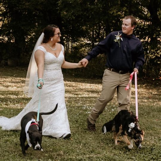 Ceremony with dogs
